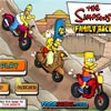 THE SIMPSONS FAMILY RACE